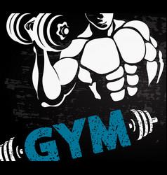 gym sport design vector image