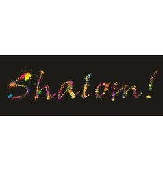 Colorful grunge Shalom vector image vector image