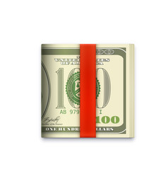 Cash money roll icon usa dollars paper banknotes vector
