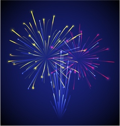 Colored chinese new year fireworks vector