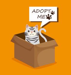 Cute cat in box carton pet friendly vector