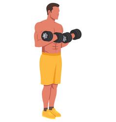 Dumbbells fitness training vector