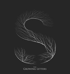 letter s of branch or cracked alphabet s vector image