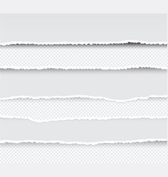 set of ripped and torn paper stripes texture of vector image