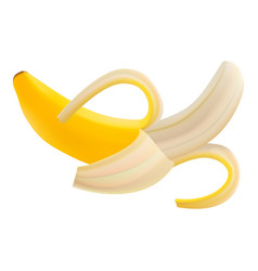 single fresh pilled banana fruit isolated on a vector image