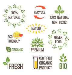 typography design for organic food vector image
