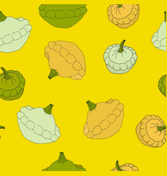 Vegetable pattern with squash vector