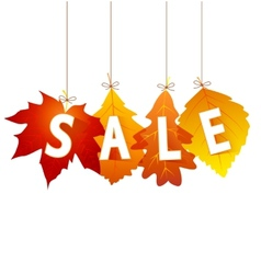 sale autumn vector image vector image