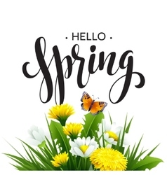 Inscription Spring Time on background with spring vector image vector image
