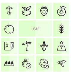 14 leaf icons vector