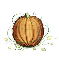 Pumpkin and seeds vector