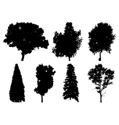Silhouettes of different trees vector