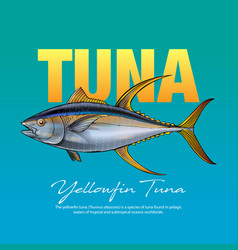 Yellowfin tuna vector