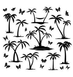 Silhouettes of palm trees vector