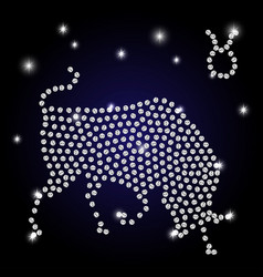 sign of the zodiac taurus is the starry sky vector image