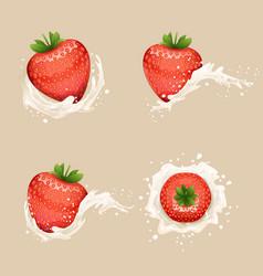 cream milk curl splash drops fruit strawberry vector image vector image