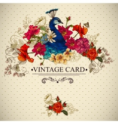 Floral Vintage Card with Peacock vector image vector image
