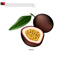 Passion fruit a famous fruit in papua new guinea vector