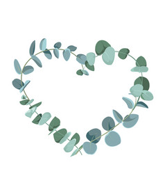 eucalyptus tropical plant in form heart on vector 31614116