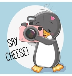 Penguin with a camera vector image
