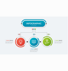 presentation infographic template 3 options vector image