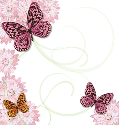 butterflies and daisy invitation vector image