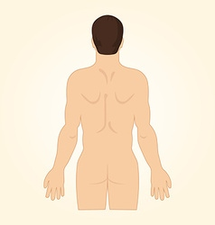 European standing back naked view up to hips vector