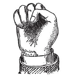Fist image vintage engraving vector