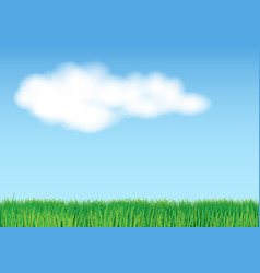 Grass on light blue background vector