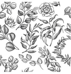 Hand drawn card with eucalyptus succulent flowers vector