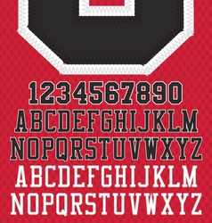 Stitched Sports Numbers and Letters vector