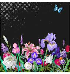 tender floral empty template with butterfly vector image