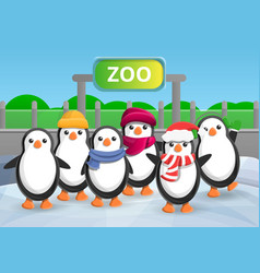 zoo penguin group concept banner cartoon style vector image