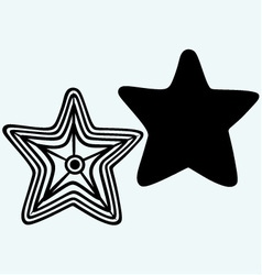 The caribbean starfish vector image vector image