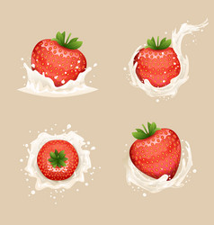 cream milk curl splash drops fruit strawberry vector image