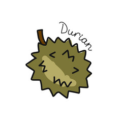 durian sketch for your design vector image