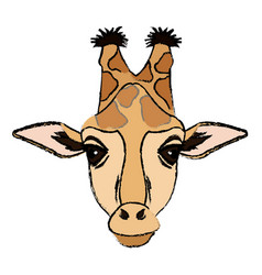 giraffe african animal wildlife image vector image