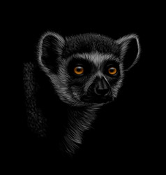 Portrait of a head of a ring-tailed lemur on a vector