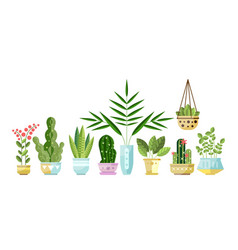 set of flat style colorful houseplants in pots vector image