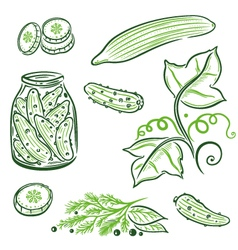 Food cucumbers vector