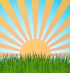 Grass background summerretrett vector image