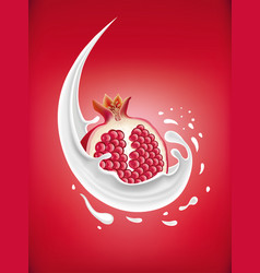 Milk splash with fresh pomegranate vector