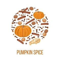 Pumpkin spice on bauble shape Thanksgiving vector image vector image