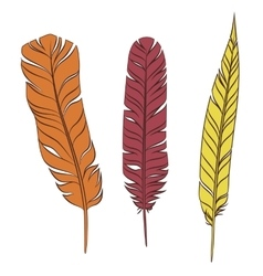 Set colorful feathers on a white background vector image vector image