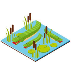 3d design for crocodile in the pond vector image