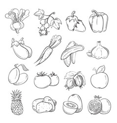 doodles of vegetables and fruits hand drawing vector image