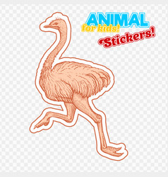 farm animal ostrich in sketch style on colorful vector image