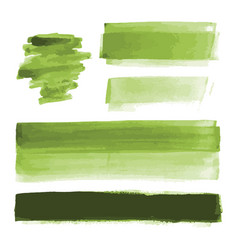 Green watercolor shapes paint brush strokes vector