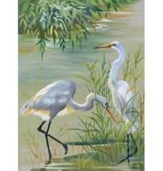 Heron birds watercolor vector image