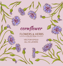 corn flower frame vector image